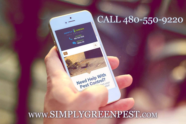 Simply Green Pest Control All Reviews Arizona
